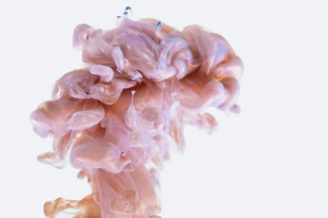 MIT #1: Koristimo samo 10% našeg mozga