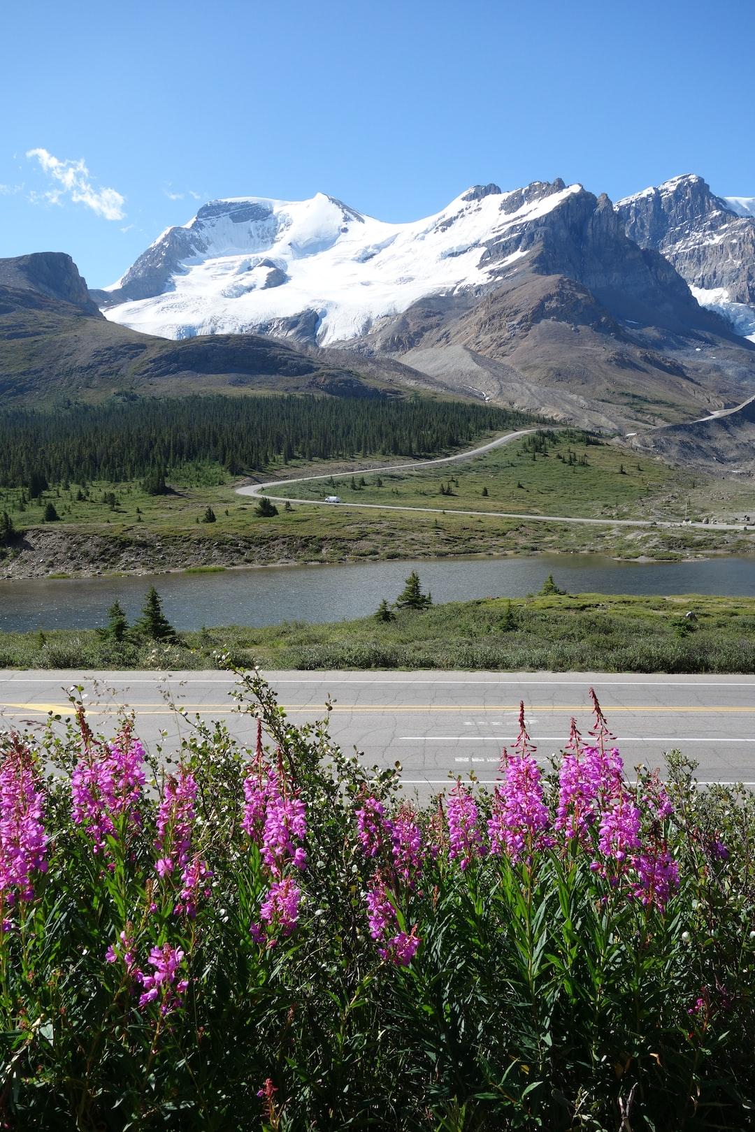 Athabasca Glacier, Columbia Icefield, Canada