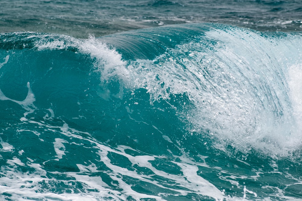 ocean wave during day