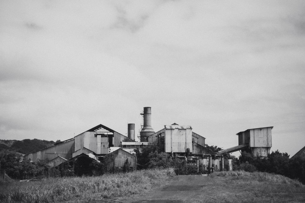 grayscale photo of houses and field