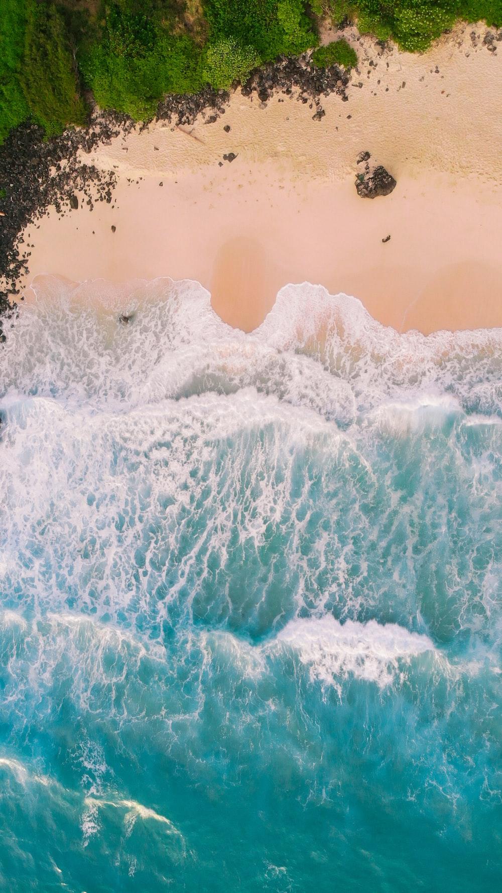 sea wave viewing seashore