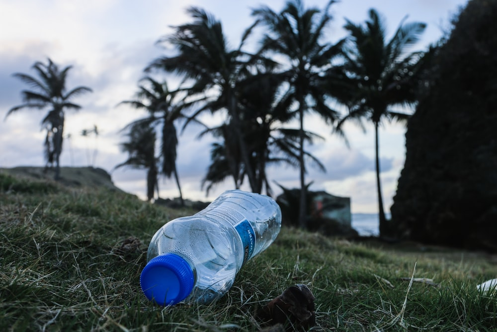 clear bottled water on green field