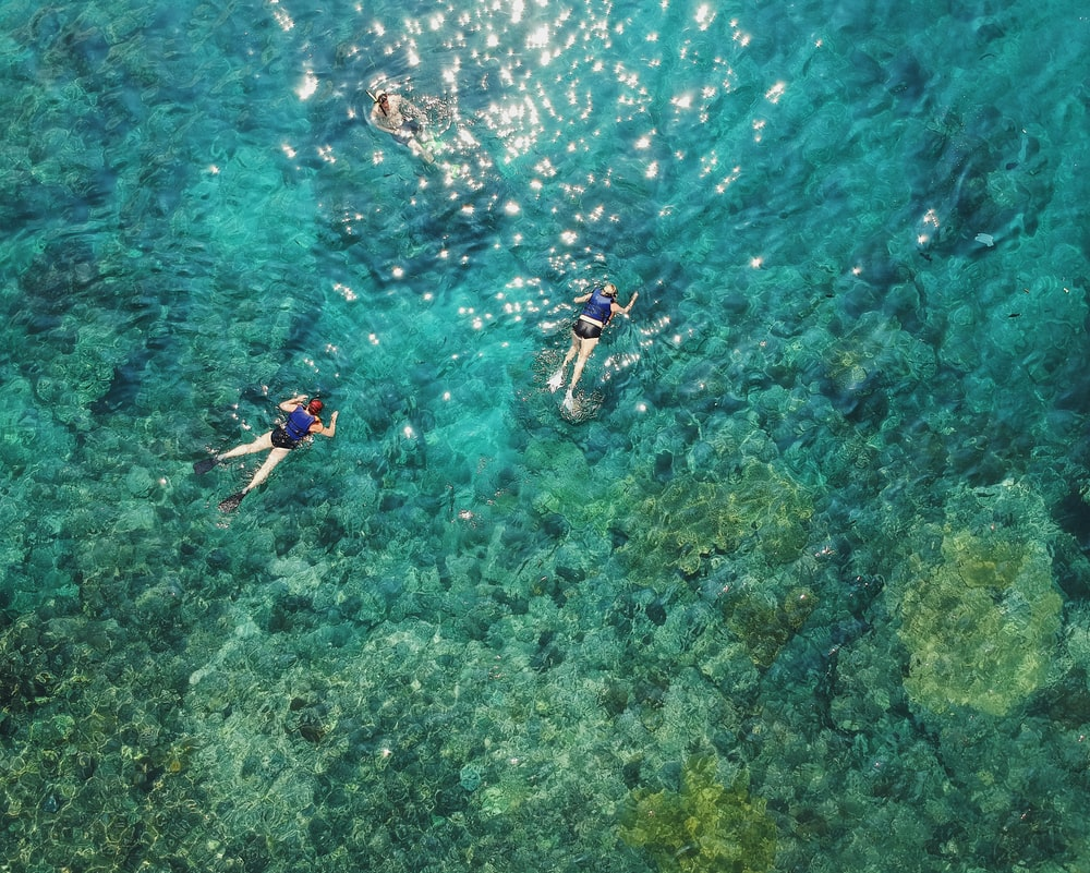 aerial photo of two persons snorkeling