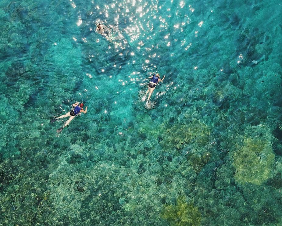 Three people snorkelling