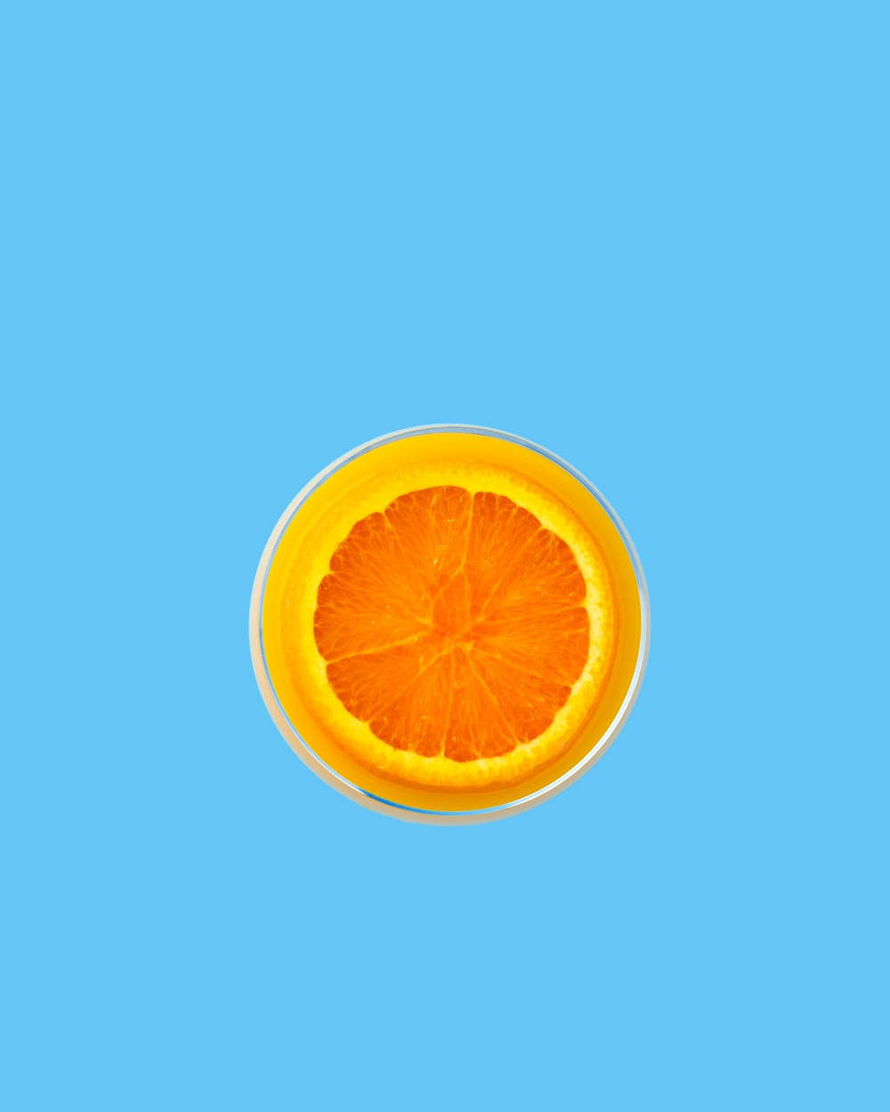 orange fruit vector art