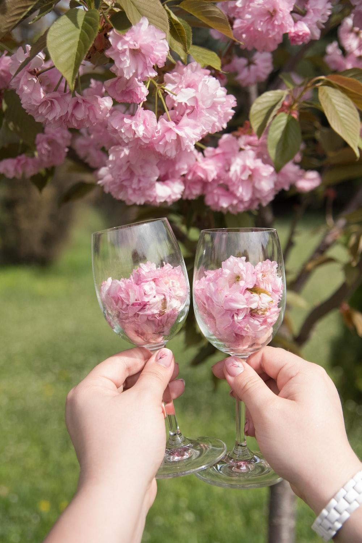 pink hydrangea in wine glass bottles