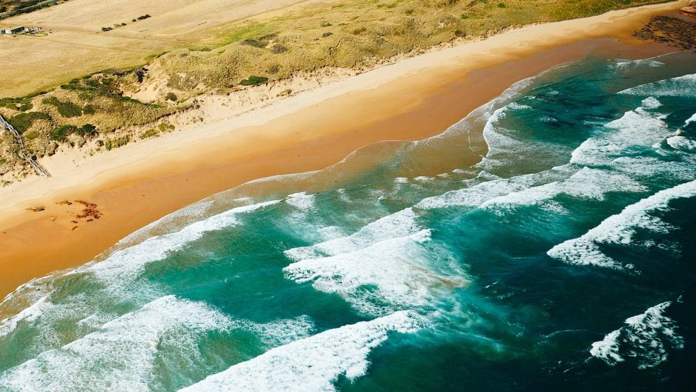 seashore in high-angle photo
