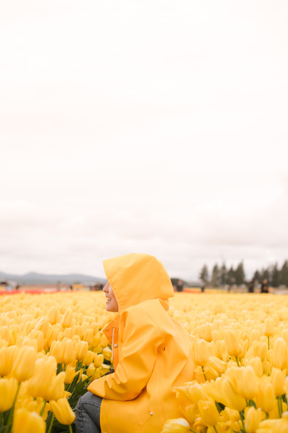 person in yellow raincoat standing on yellow tulip field