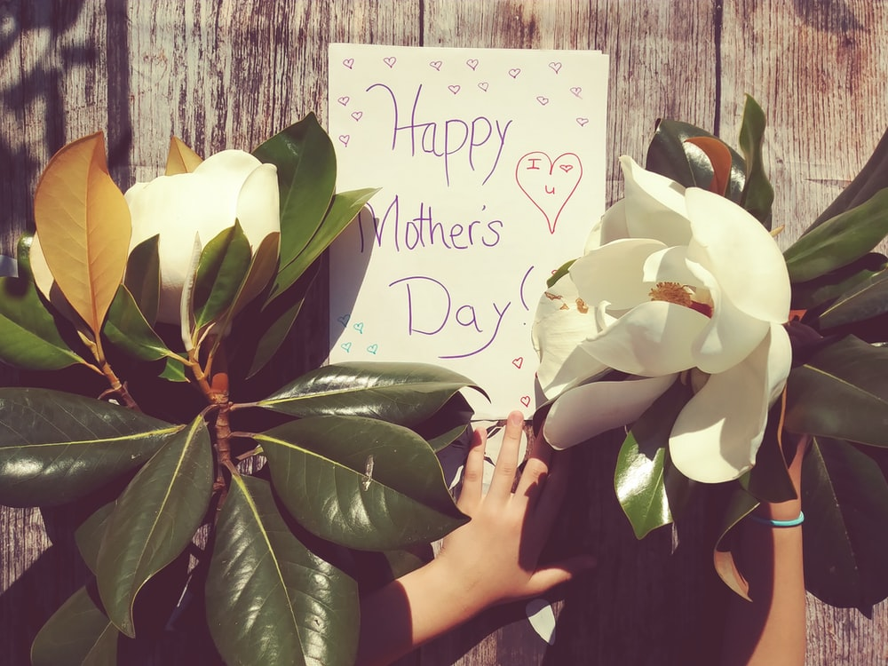 person near happy mother's day signage and plants