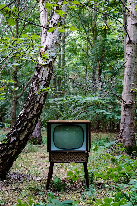grey CRT monitor beside trees