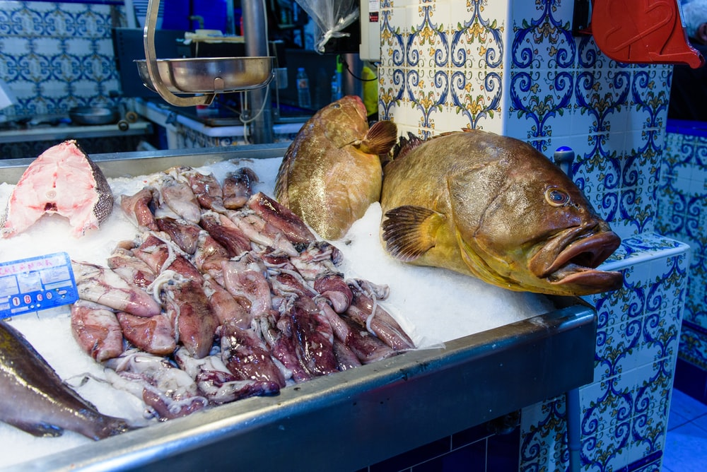 fish and squid displayed on rack with ice