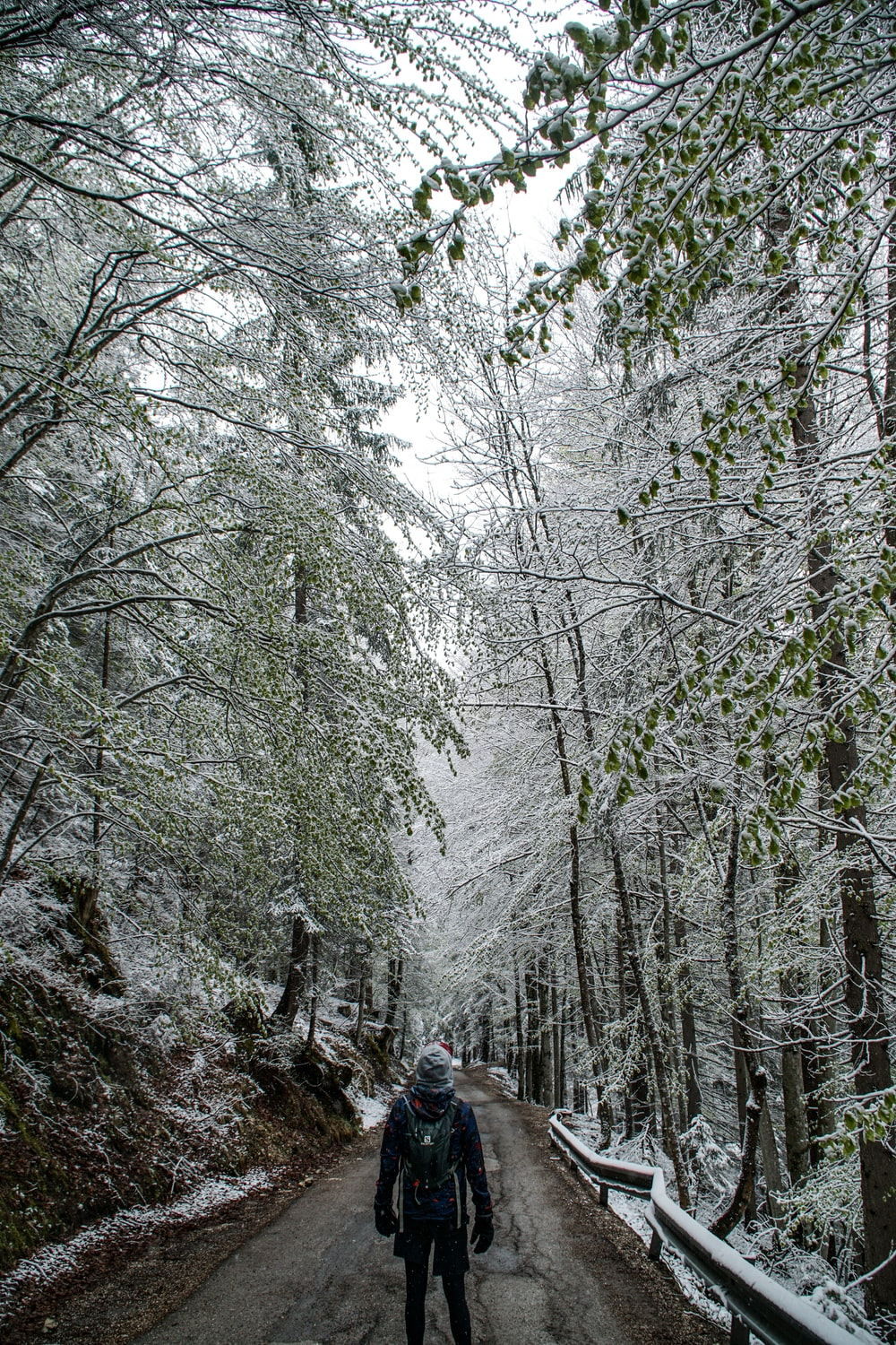 man with backpack standing on walkway between snow-covered trees