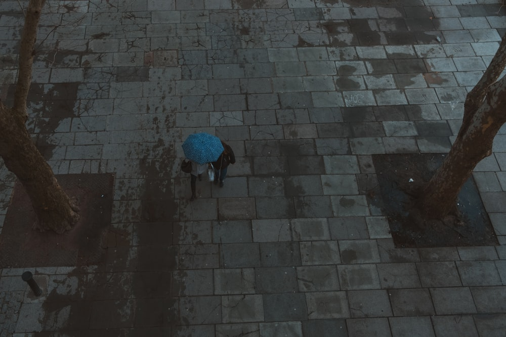 person holding blue umbrella
