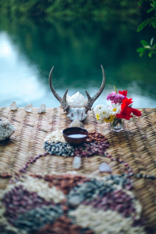 brown deer horn decor screenshot