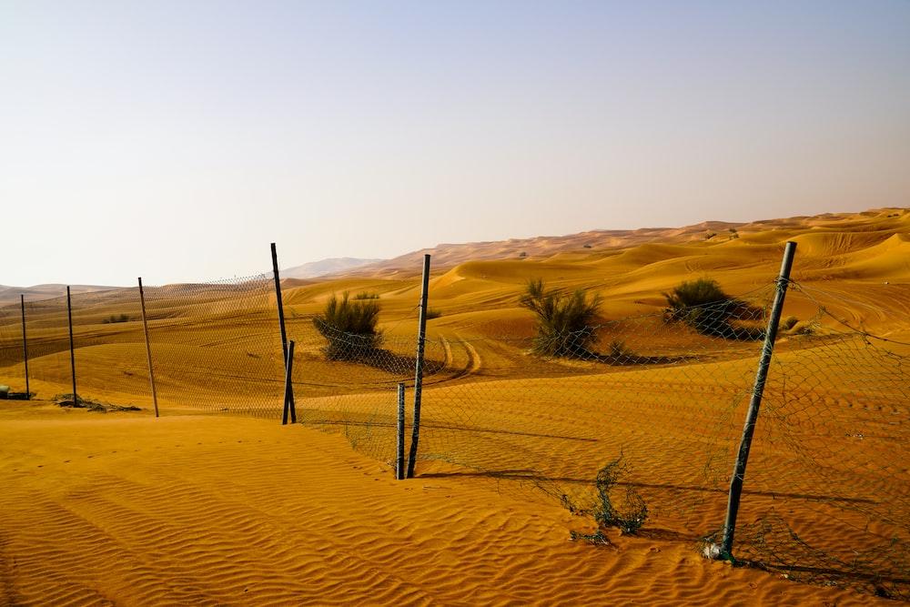 desert during daytime