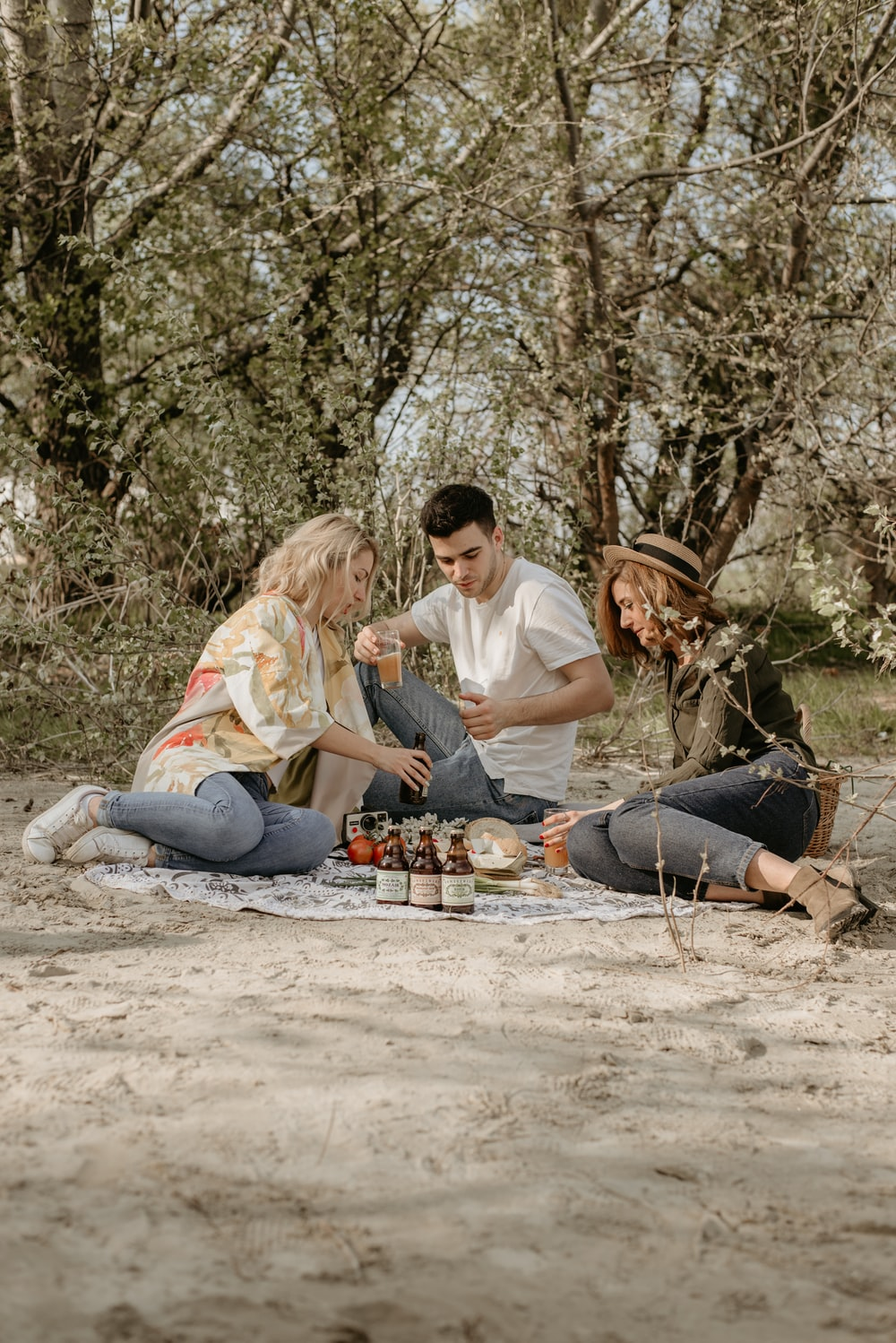 people doing picnic during daytime