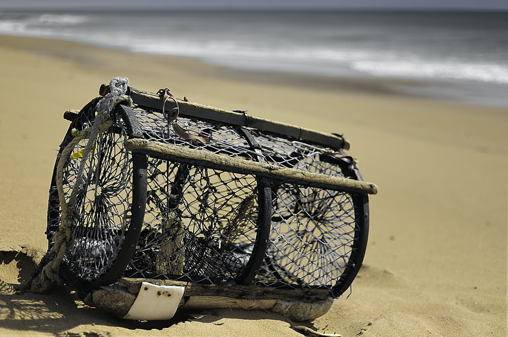selective focus photography of cylindrical black cage on seashore