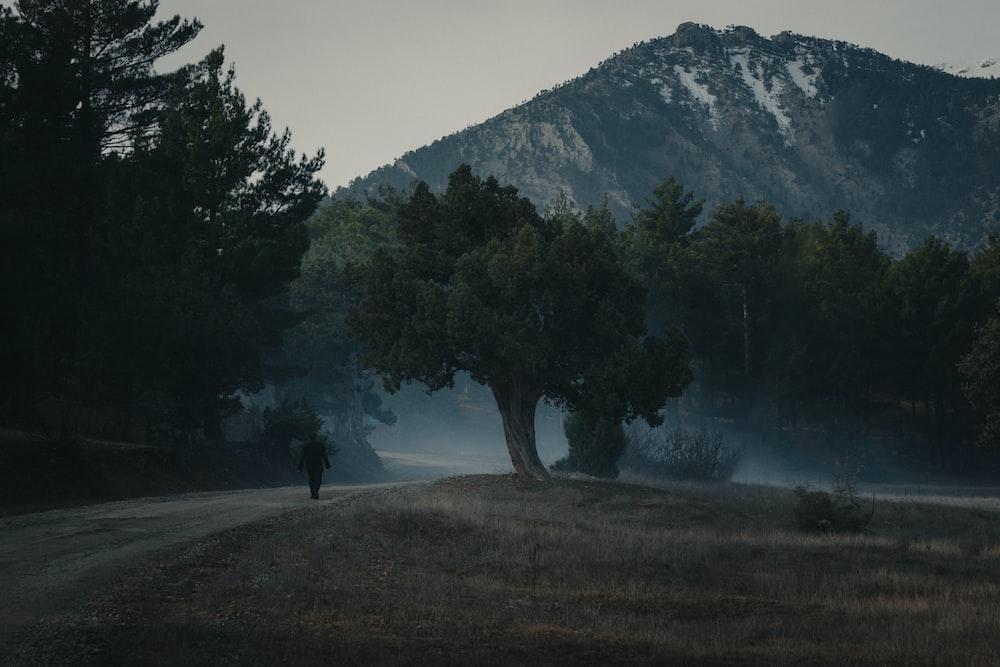 man near trees