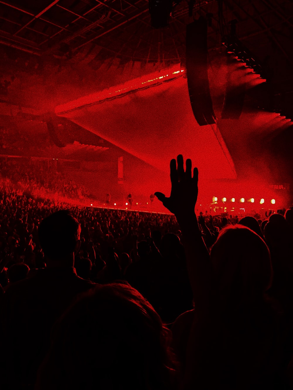 people on the concert photography
