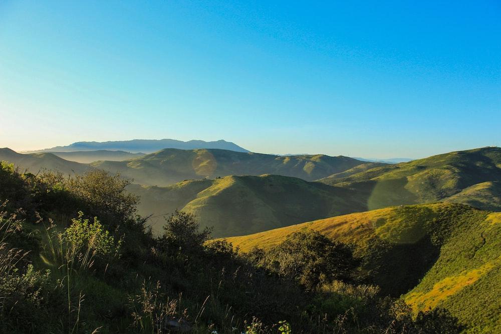 landscape photographjy of mountain field