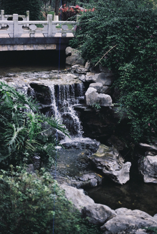 bridge above waterfalls near trees