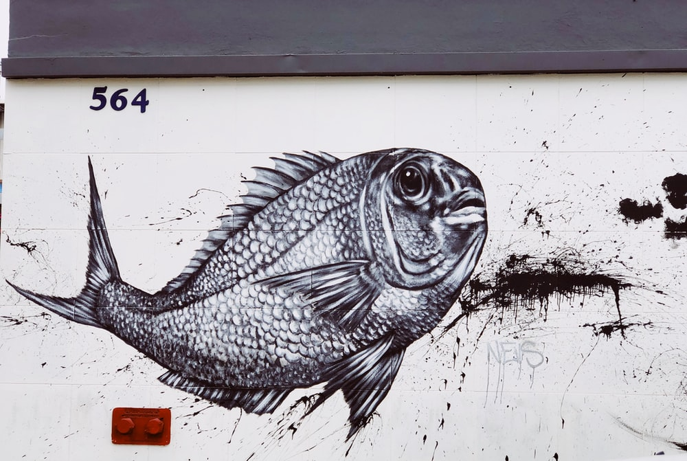 black and white graffiti of a fish on a white wall