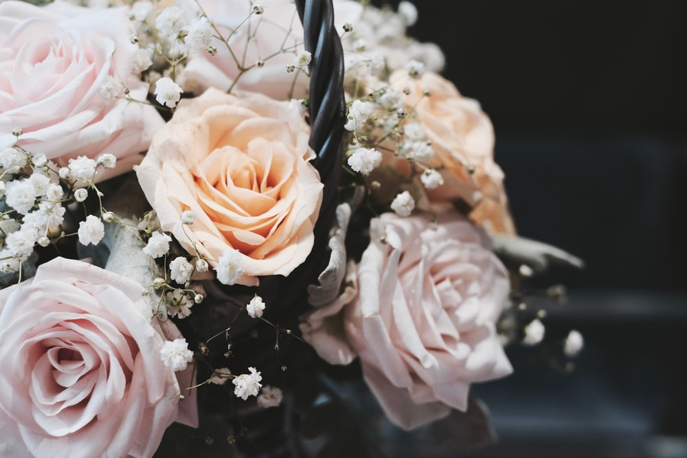 blooming beige rose flowers and white Baby's Breath bouquet