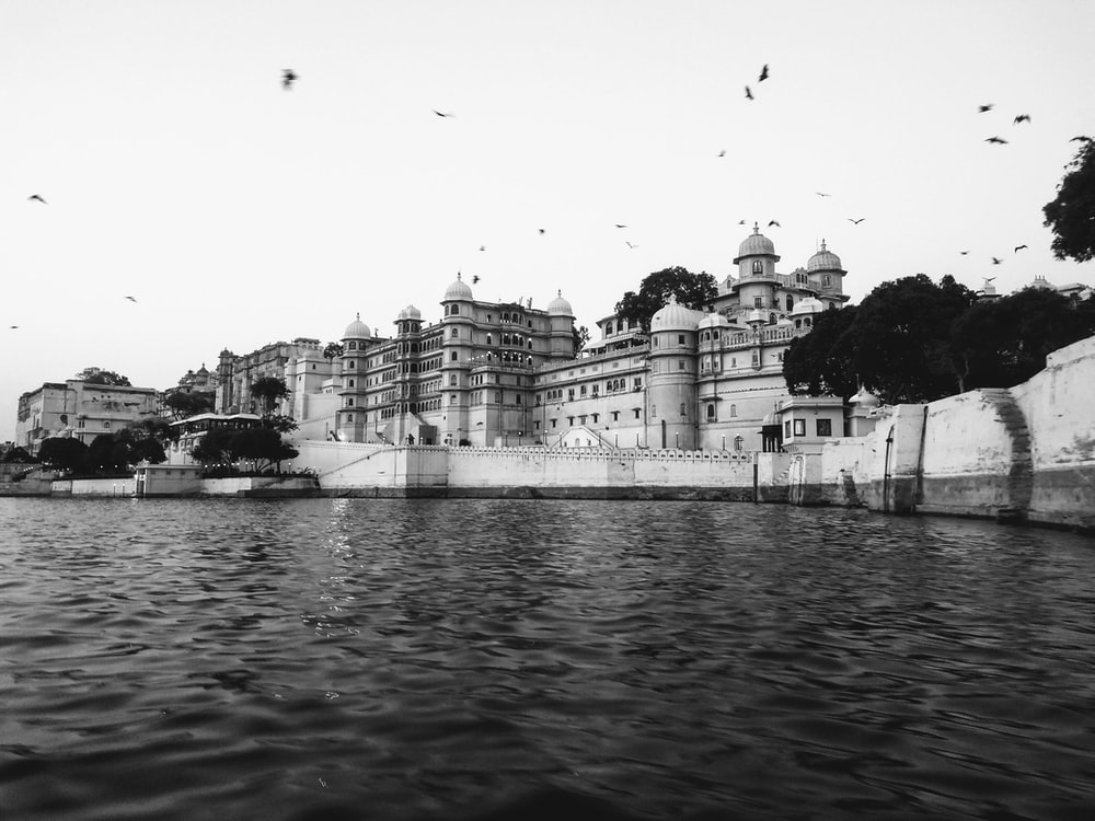 birds flying over palace by the river
