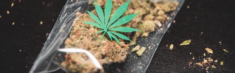 元ロッテのジャクソンを大麻所持で逮捕。広島県警による逮捕で深まる疑惑。