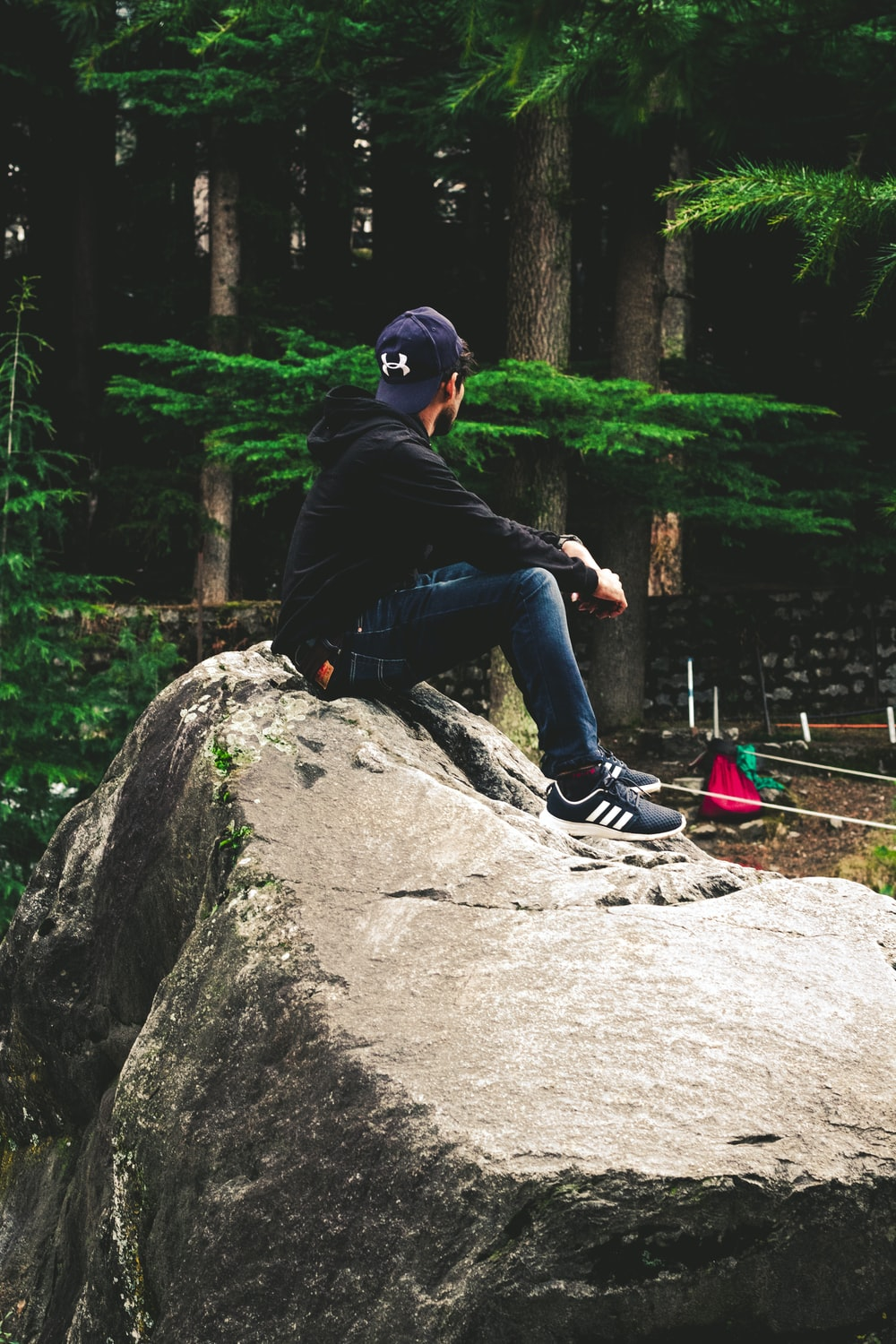 man sits on rock near pine tree