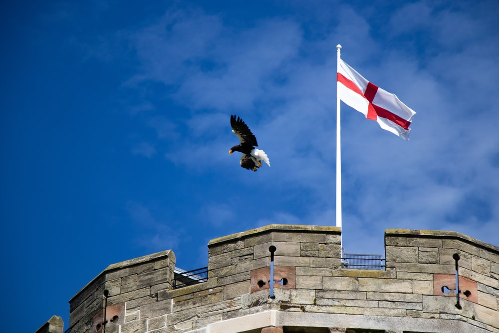 eagle about to landing on top of the building near flag of England