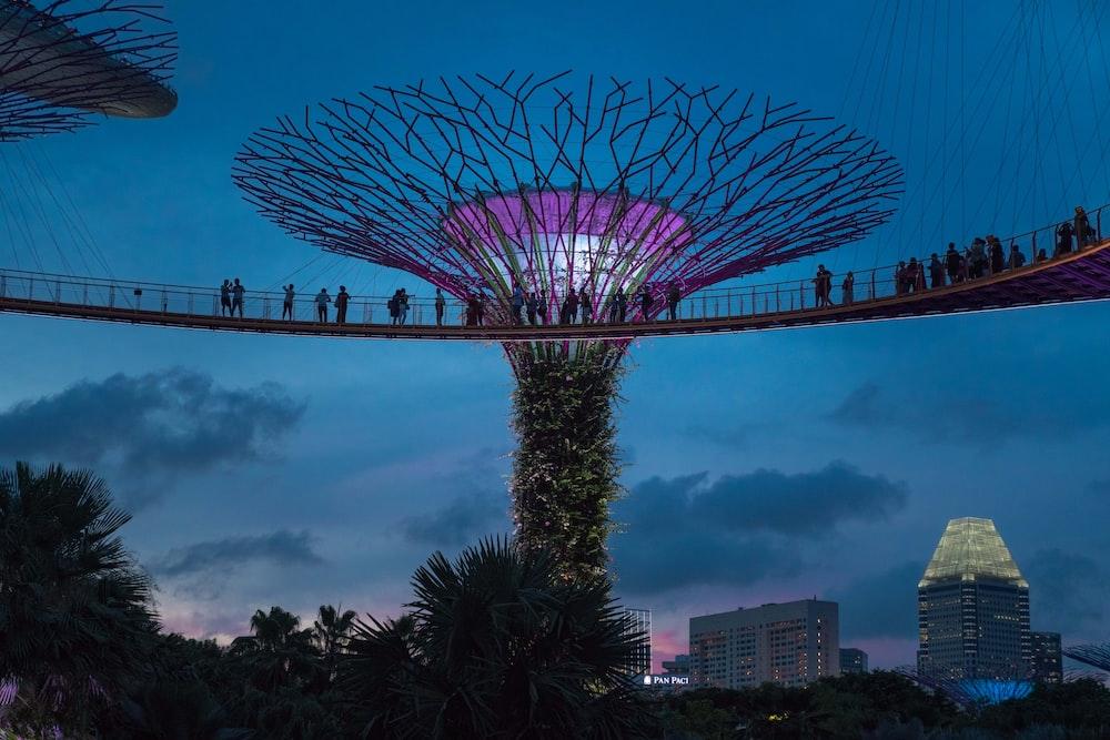 people on bridge beside tree tower during night
