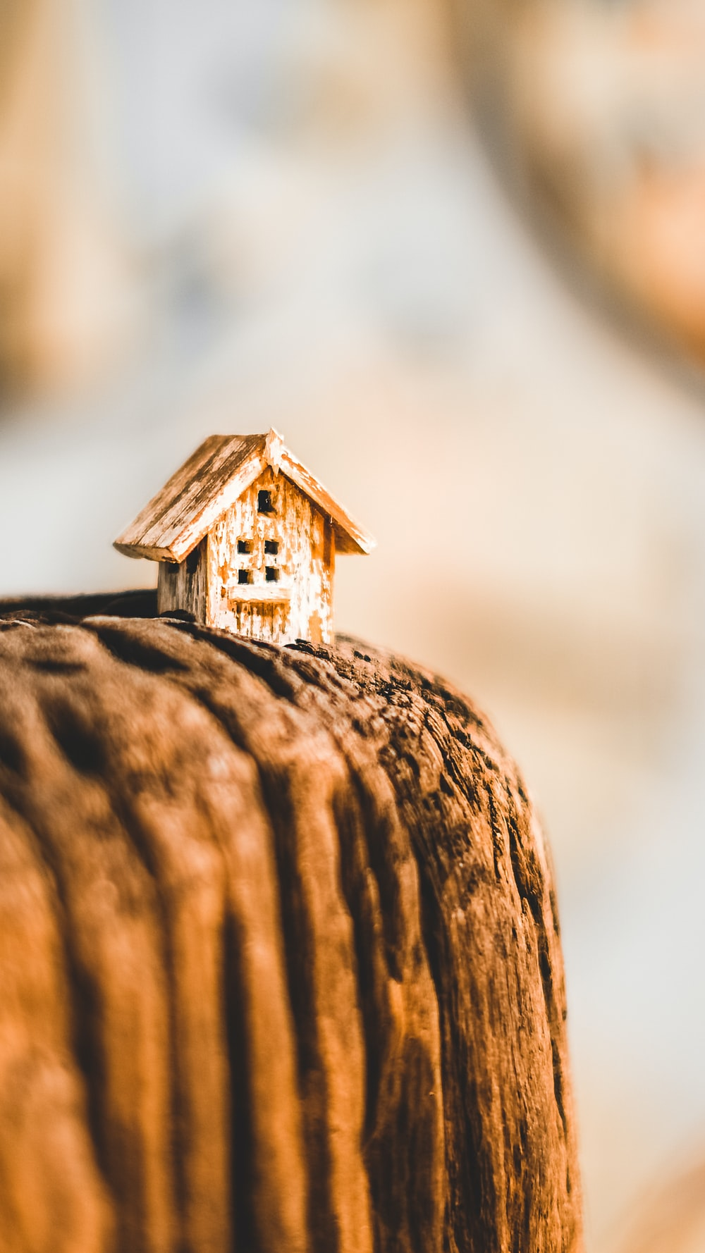 selective focus photography of brown wooden house miniature