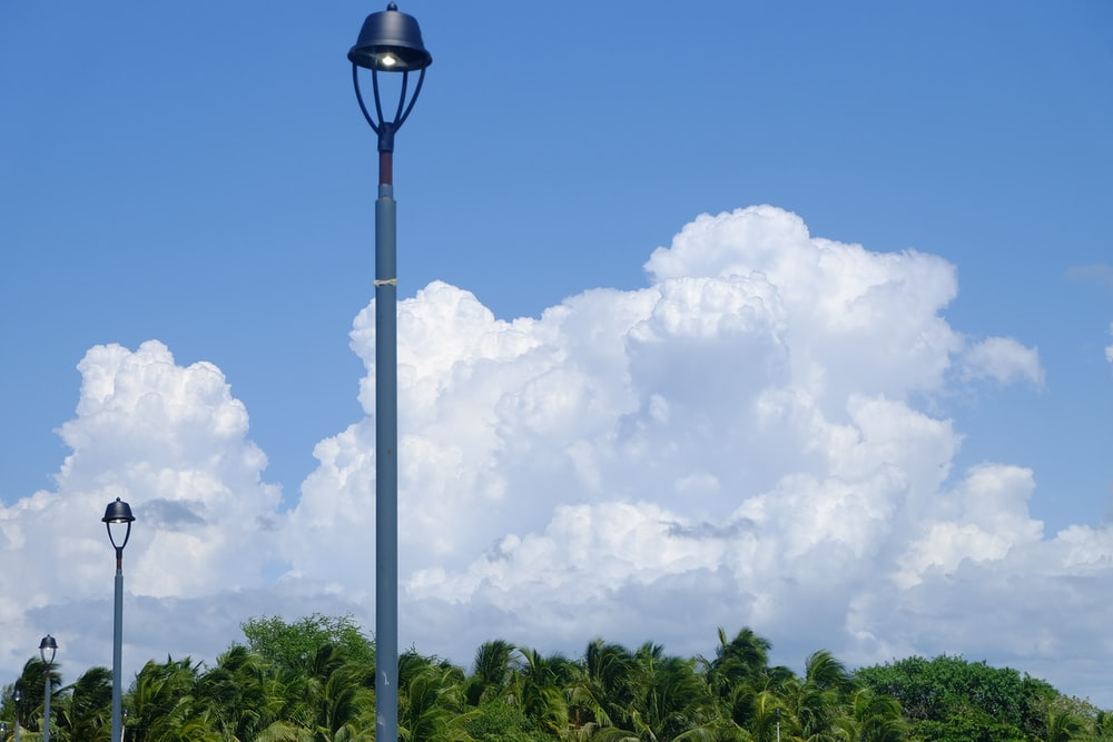 post lamps near green trees