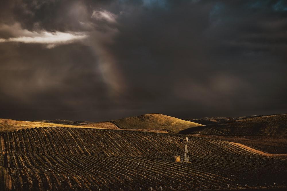 story clouds under plantation