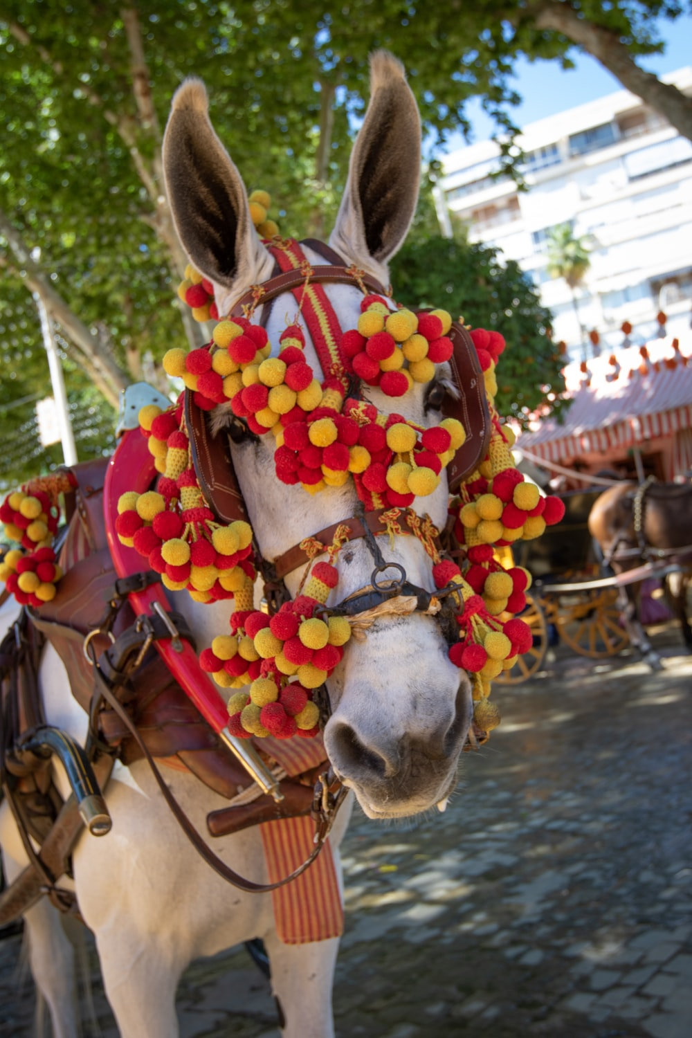 horse wearing floral lei