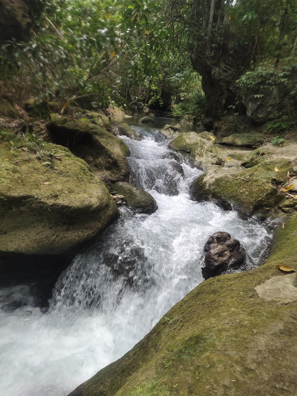 river in between rocks on forestt