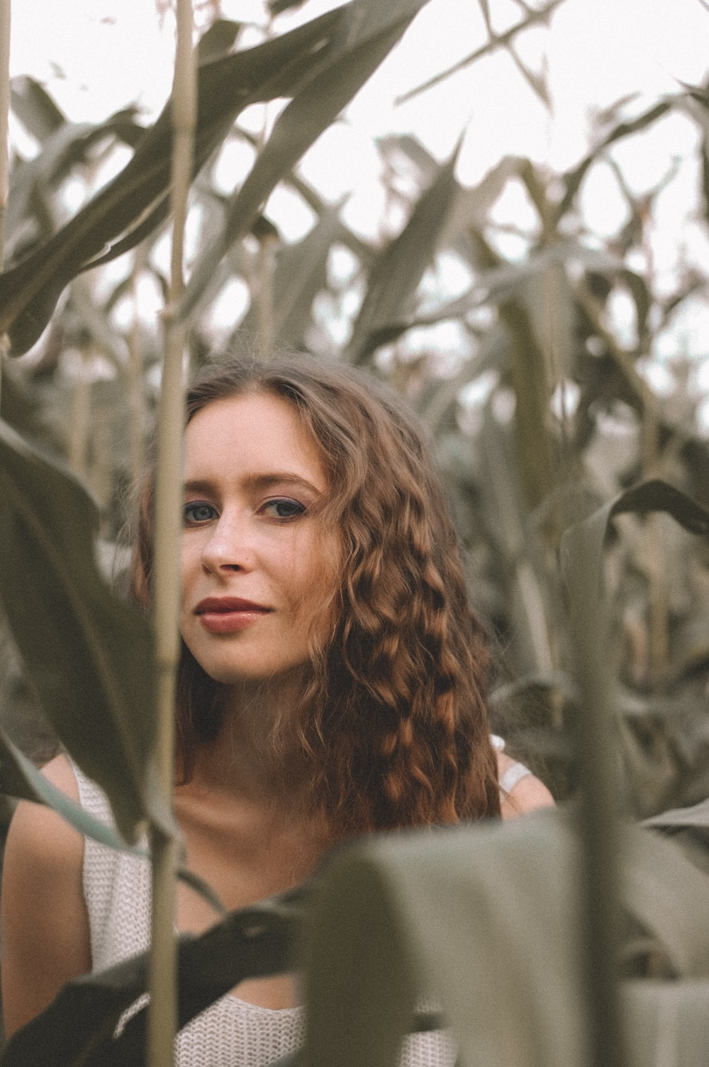 woman standing and surrounded by corn plants