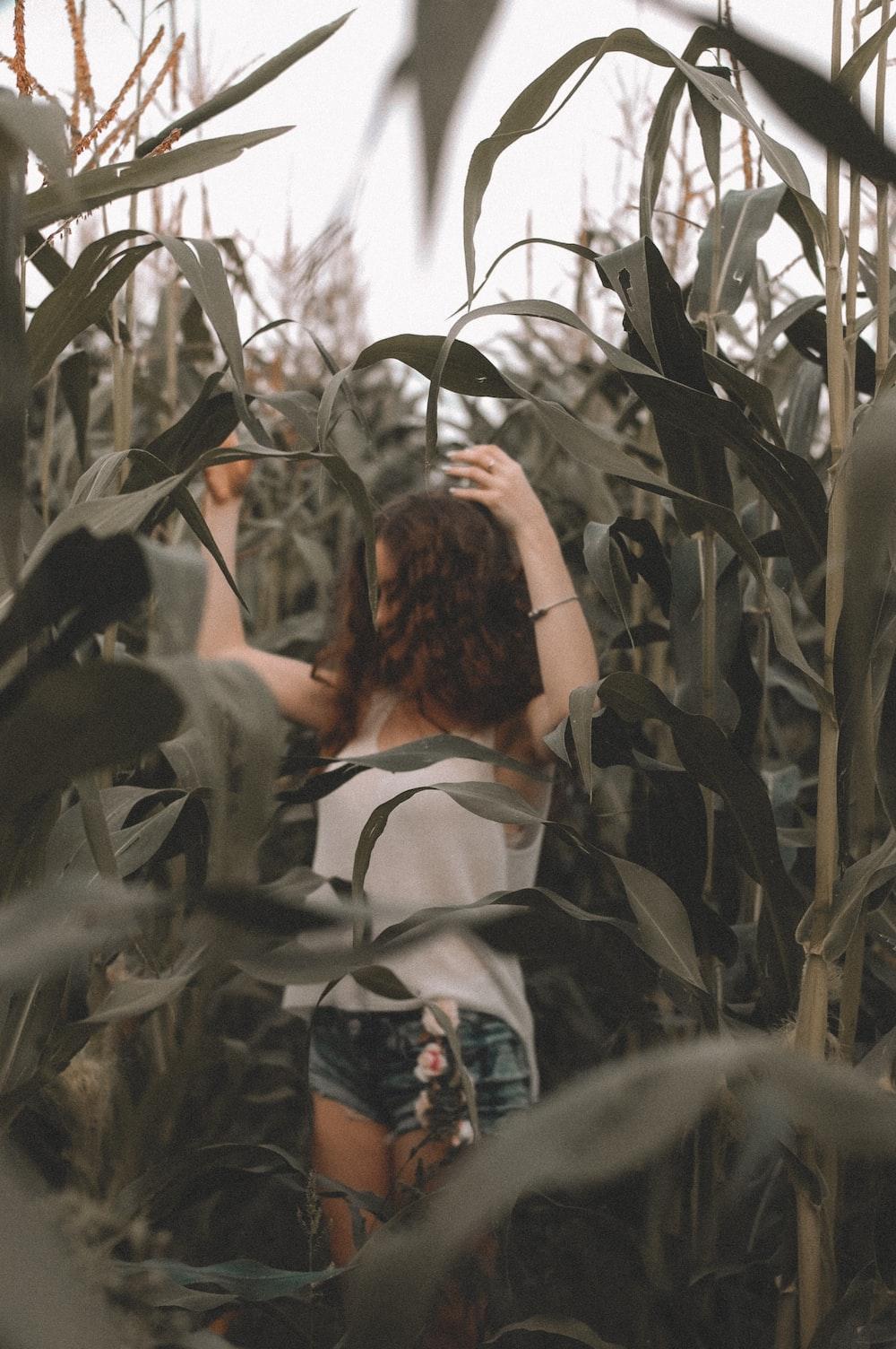 woman wearing white tank top standing among corn field