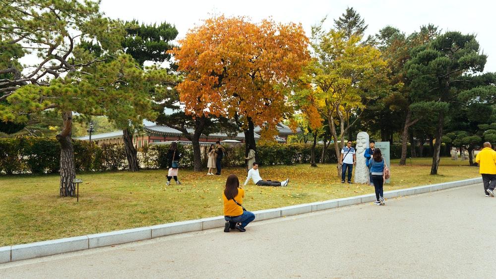 people having photographs taken in park