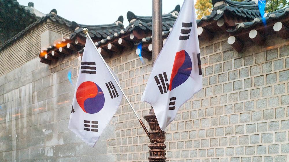 two Korea National flags