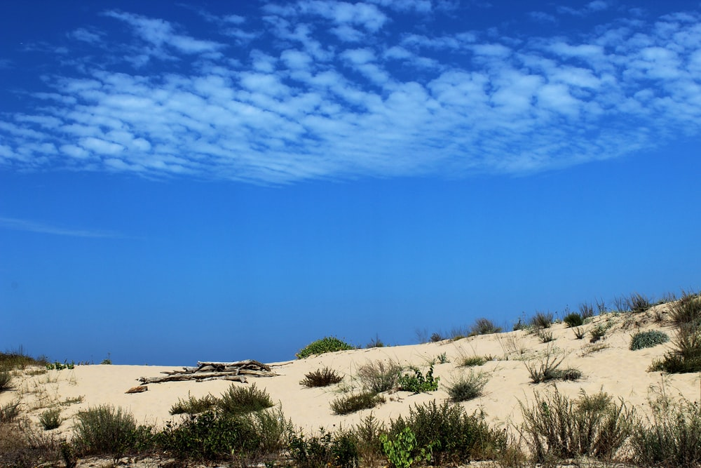 desert under white clouds and blue sky during daytime
