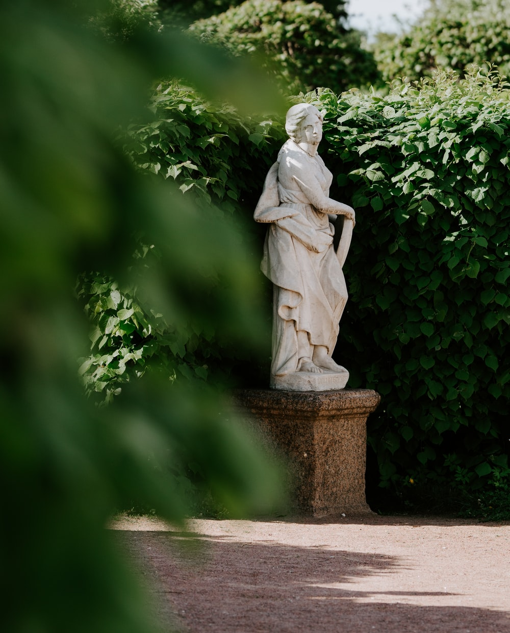 shallow focus photo of statue beside plants