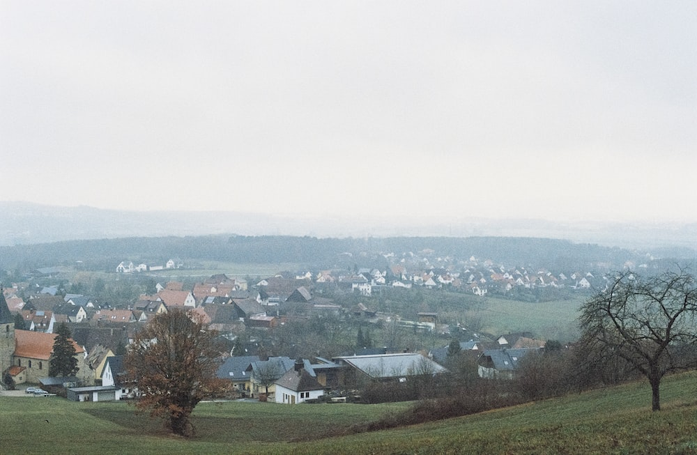 village and trees during daytime