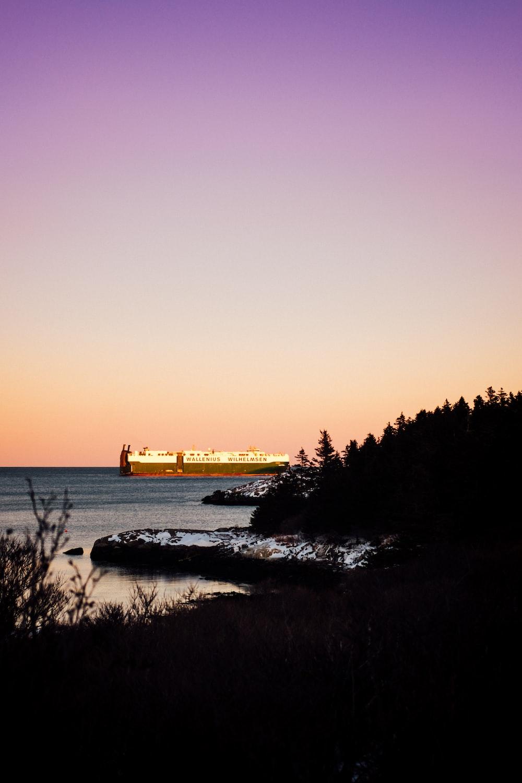 cruise ship on the ocean near island