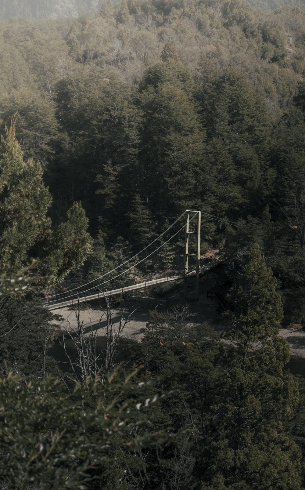 aerial photography of gray steel bridge