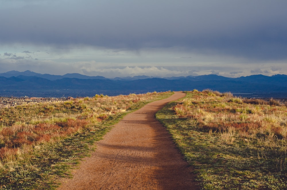 brown road towards mountains
