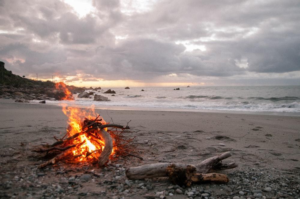 bonfire on shore near body of water