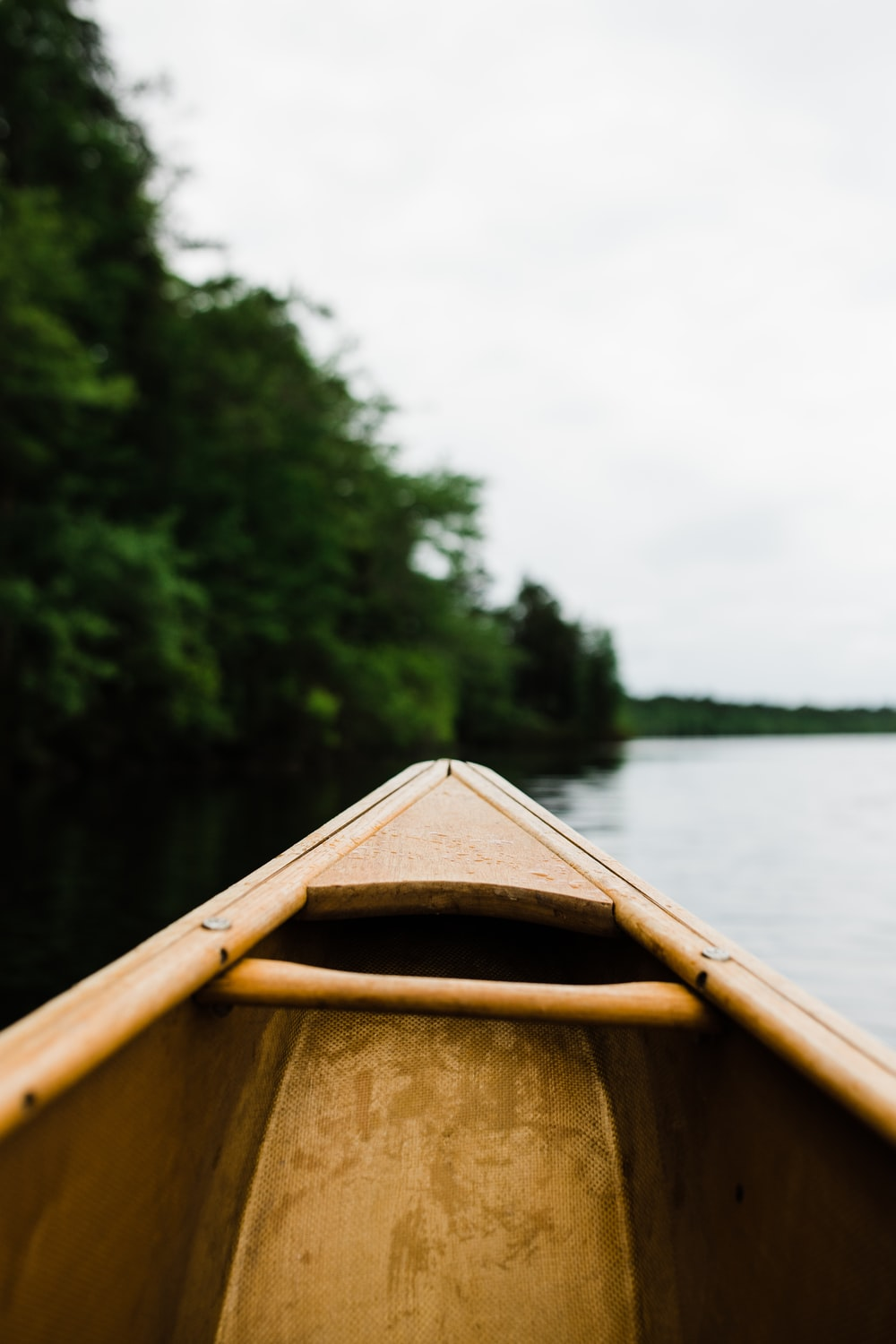 brown wooden boat near trees