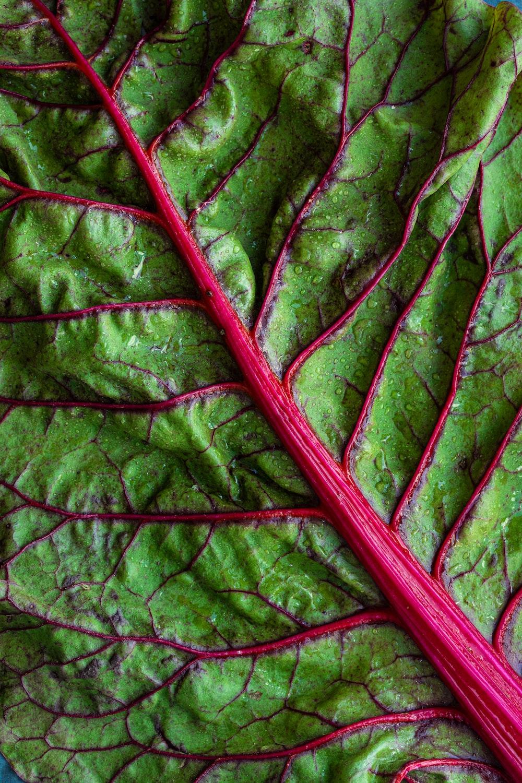 green vegetable leaf